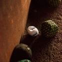 crossboccia-sportfotografie-7