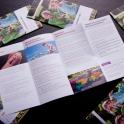 Die Flyer wurden per Express-Druck verarbeitet und direkt zum Kunden geliefert